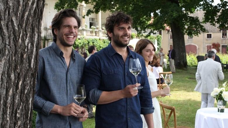 C More First - Vår vingård i Bourgogne