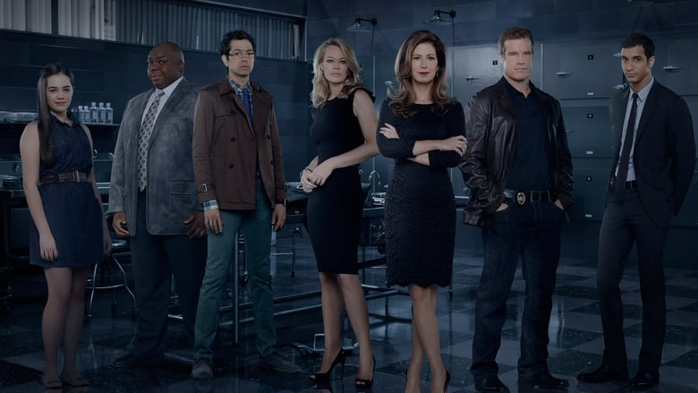 TNT - Body of proof