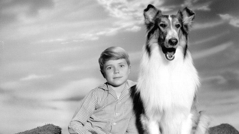 svtb.svt.se - Lassie