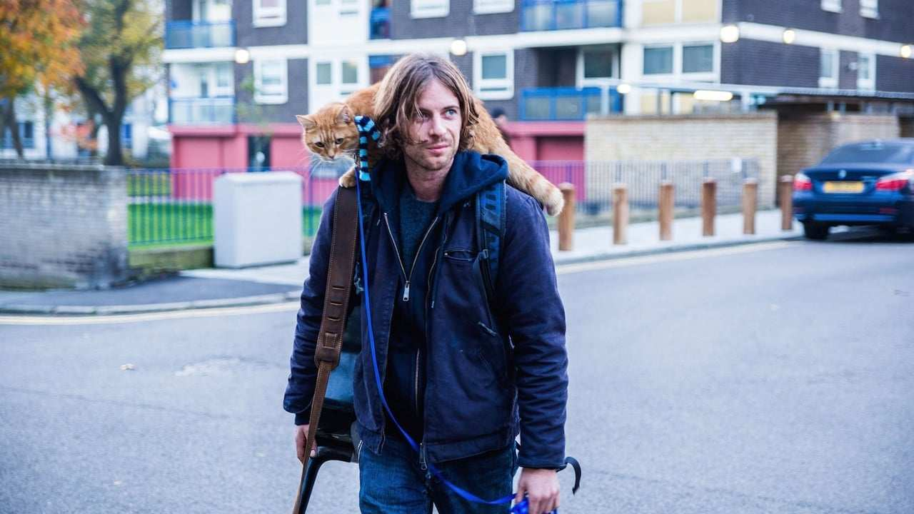 Viasat Film Hits - A street cat named Bob