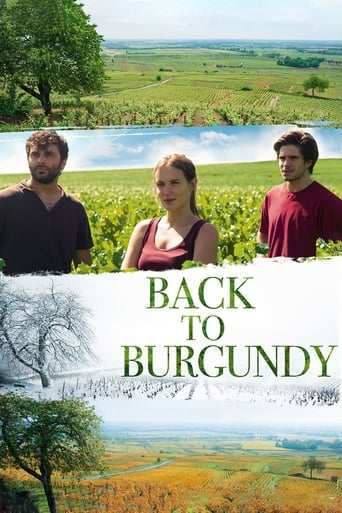 Vår vingård i Bourgogne