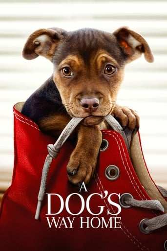 Film: A Dog's Way Home