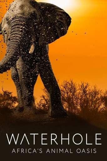 Bild från filmen Waterhole: Africa's Animal Oasis