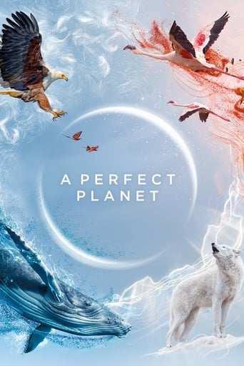 Bild från filmen A Perfect Planet