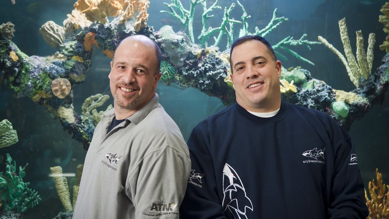 Animal Planet - Tanked