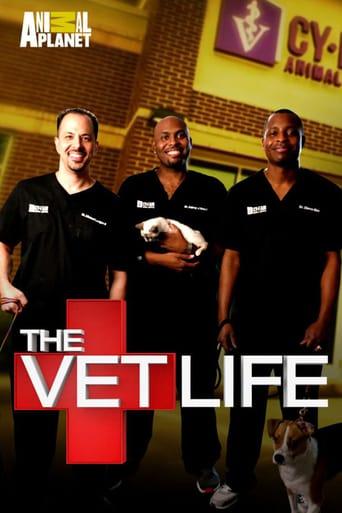 Bild från filmen The vet life