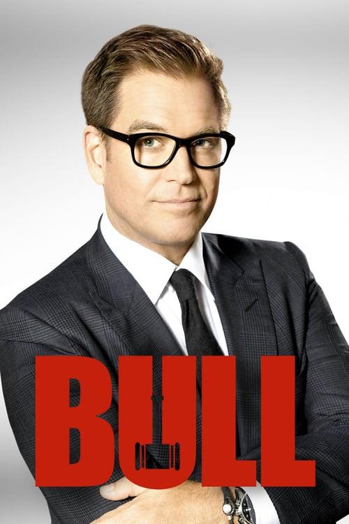 Tv-serien: Bull