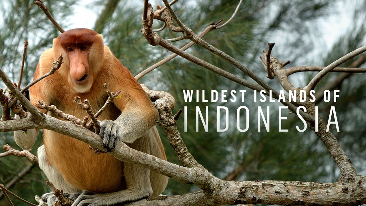 Animal Planet - Wildest islands of Indonesia