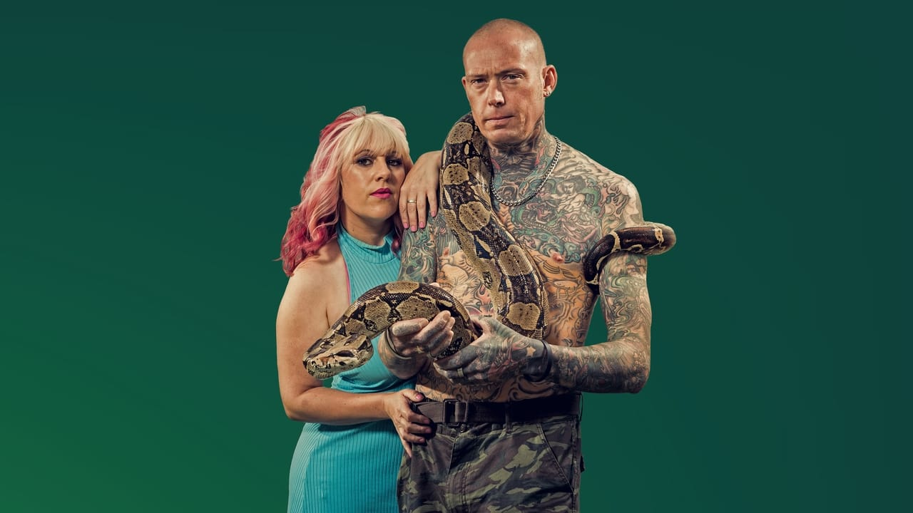 TV4 Fakta - Snake city